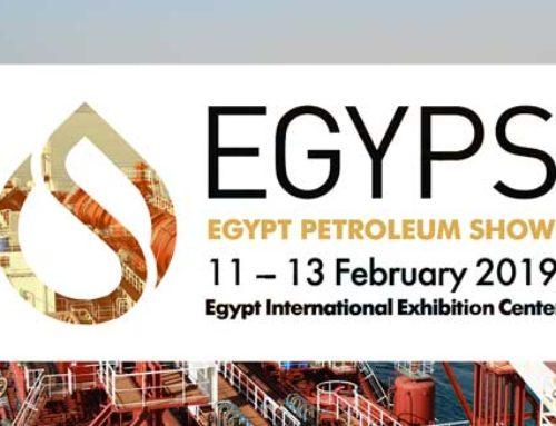 11-13 February, EGYPS 2019